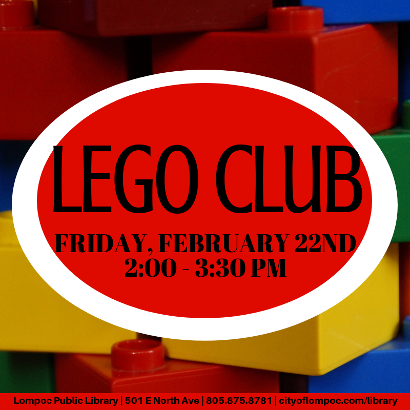 Feb Lego Club
