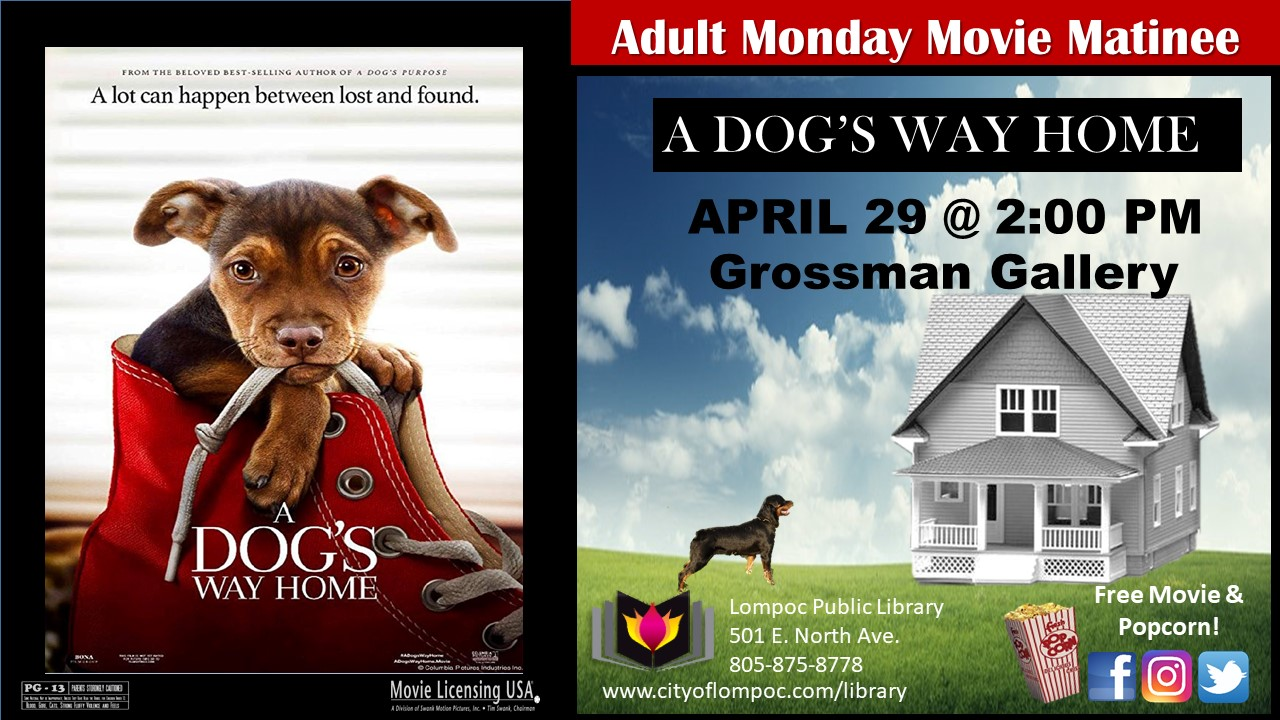 Monday Movie - A Dogs Way Home 4.29.19